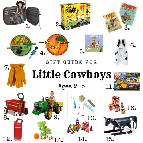 Gift Guide for Little Boys